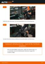 Scheibenwischer vorne selber wechseln: Audi A3 8L1 - Austauschanleitung