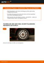 Federn hinten selber wechseln: Audi A3 8L1 - Austauschanleitung