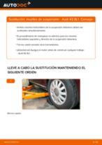Sustitución de Muelle de chasis en AUDI A3 (8L1) - consejos y trucos