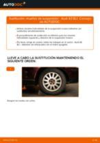 Cómo cambiar: muelles de suspensión de la parte trasera - Audi A3 8L1 | Guía de sustitución