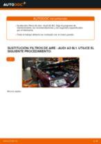 Recomendaciones de mecánicos de automóviles para reemplazar Filtro de Aire en un AUDI Audi A3 Sportback 8P 1.9 TDI