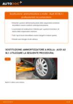 Sostituzione Kit riparazione pinza freno AUDI A3: pdf gratuito