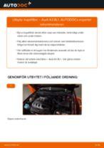 Byta kupéfilter på Audi A3 8L1 – utbytesguide