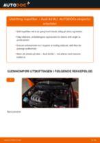 Montering Kupefilter AUDI A3 (8L1) - steg-for-steg manualer