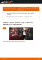Jak wymienić filtr paliwa w Audi A3 8L1 - poradnik naprawy