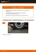 Jak wymienić amortyzator tył w Audi A3 8L1 - poradnik naprawy