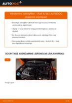 Kuidas vahetada Audi A3 8L1 salongifilter – õpetus