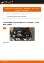 Samm-sammuline PDF-juhend AUDI A3 (8L1) Süüteküünal asendamise kohta