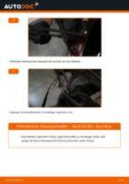 Kuidas vahetada Audi A3 8L1 taga-klaasipuhastite – õpetus