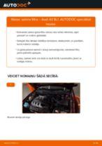 Kā nomainīt: salona gaisa filtru Audi A3 8L1 - nomaiņas ceļvedis