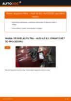 Kā nomainīt: degvielas filtru Audi A3 8L1 - nomaiņas ceļvedis