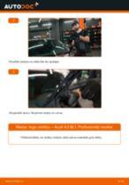 Kā nomainīt: priekšas logu slotiņas Audi A3 8L1 - nomaiņas ceļvedis