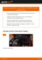 Kaip pakeisti Audi A3 8L1 salono filtro - keitimo instrukcija