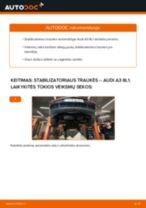 Kaip pakeisti Audi A3 8L1 stabilizatoriaus traukės: priekis - keitimo instrukcija