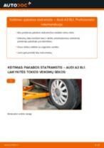 Kaip pakeisti Audi A3 8L1 pakabos statramstis: priekis - keitimo instrukcija