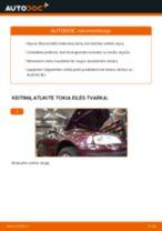 Kaip pakeisti Audi A3 8L1 variklio alyvos ir alyvos filtra - keitimo instrukcija