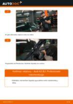 Kaip pakeisti Audi A3 8L1 valytuvų: priekis - keitimo instrukcija