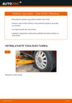 Kaip pakeisti Audi A3 8L1 spyruoklės: priekis - keitimo instrukcija