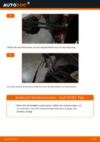 Wie Radnabe hinten links rechts beim Mercedes W176 wechseln - Handbuch online