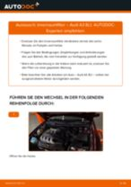 Empfehlungen des Automechanikers zum Wechsel von AUDI Audi A3 8pa 1.9 TDI Innenraumfilter