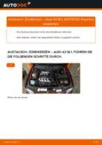 Wechseln von Zündkerzensatz AUDI A3: PDF kostenlos