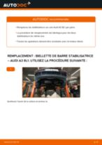 Changement Bougies d'Allumage Skoda Felicia 6u5 : guide pdf