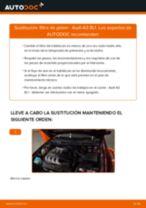Tutorial paso a paso en PDF sobre el cambio de Filtro de Habitáculo en AUDI A3 (8L1)
