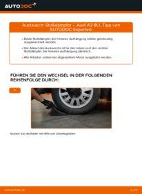 Wie der Wechsel durchführt wird: Stoßdämpfer 1.9 TDI Audi A3 8l1 tauschen