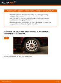 Wie der Wechsel durchführt wird: Federn 1.9 TDI Audi A3 8L tauschen