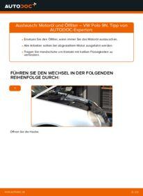 Wie der Wechsel durchführt wird: Ölfilter 1.4 16V Polo 9n tauschen