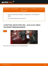 Slik bytter du Drivstoffilter på AUDI A3