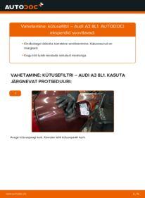 Kuidas välja vahetamist läbi viia: 1.9 TDI Audi A3 8l1 Kütusefilter