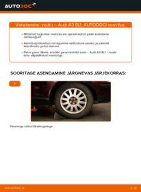 Kuidas välja vahetamist läbi viia: 1.9 TDI Audi A3 8l1 Vedrustus