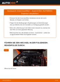 Wie der Wechsel durchführt wird: Innenraumfilter 1.9 TDI Audi A3 8l1 tauschen
