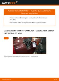 Wie der Wechsel durchführt wird: Kraftstofffilter 1.9 TDI Audi A3 8L tauschen
