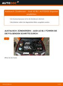 Wie der Wechsel durchführt wird: Zündkerzen 1.9 TDI Audi A3 8L tauschen