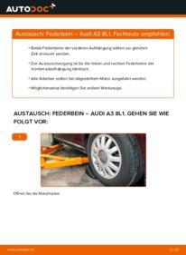 Wie der Wechsel durchführt wird: Stoßdämpfer 1.9 TDI Audi A3 8L tauschen