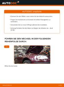 Wie der Wechsel durchführt wird: Ölfilter 1.9 TDI Audi A3 8L tauschen