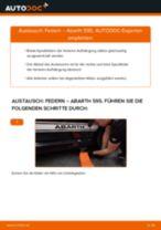 TOYOTA URBAN CRUISER Gasdruckdämpfer Heckklappe: Online-Handbuch zum Selbstwechsel