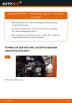 Wie Fernscheinwerfer Glühlampe beim Land Rover Freelander Cabrio wechseln - Handbuch online