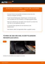 Fiorino 127 Domlager ersetzen - Tipps und Tricks