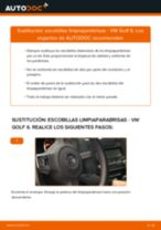 Cómo cambiar: escobillas limpiaparabrisas de la parte delantera - VW Golf 6   Guía de sustitución