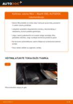 Kaip pakeisti Abarth 595 salono filtro - keitimo instrukcija