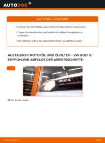 Wie der Wechsel durchführt wird: Ölfilter 1.6 TDI Golf 6 tauschen
