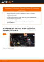 Anleitung: Renault Megane 2 Federbein vorne wechseln