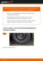 Cómo cambiar y ajustar Muelle de chasis RENAULT MEGANE: tutorial pdf