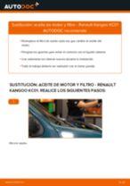 Cambio Kit de Reparación de la Rótula de la Suspensión RENAULT KANGOO: tutorial en línea