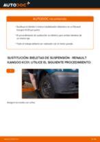 PDF manual sobre mantenimiento KANGOO