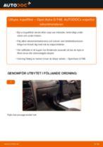 Byta kupéfilter på Opel Astra G F48 – utbytesguide