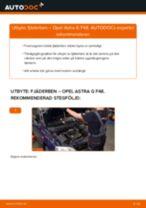 DIY-manual för byte av Fjäderbenslagring i OPEL ZAFIRA 2020
